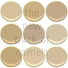 benjamin moore beige camel colors blanched almond bridgewater