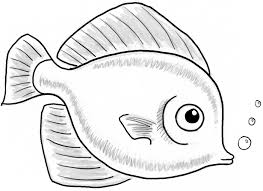 coloring pages luxury fish drawings kids btak5oqyc coloring
