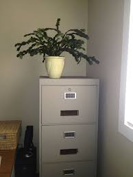 Chalk Paint On Metal Filing Cabinet 28 Best Chalk Paint Ideas Images On Pinterest Paint Ideas