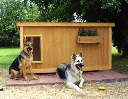 dog house plans for large dogs free insulated dog house plans for