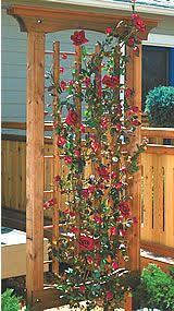 Garden Arch Plans by How To Build A Simple Garden Arbor Garden Arbours Arbors And