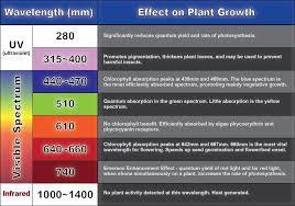 most efficient grow light greenhouse urban farming horticultural lighting gusco