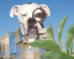3d boxer dog t shirt dog large original photograph of boxer dog in