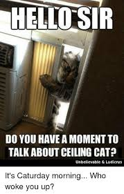 Ceiling Cat Meme - hello sir do you have a moment to talk about ceiling cat