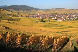 Colmar France Alsace Half Day Wine Tour From Colmar 2017