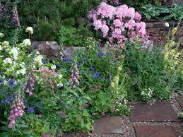 Flower Garden Ideas Beginners by Fashionable Design Ideas Perennial Garden Charming Decoration