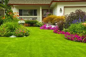 cura giardino come curare il prato in inverno non sprecare