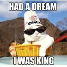 I Had A Dream Meme - funny cat memes archives page 154 of 983 cat planet cat planet