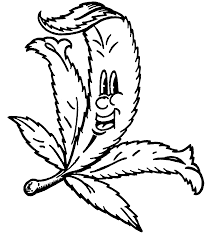 drawn weed leaf stencil pencil and in color drawn weed leaf stencil