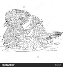zentangle stylized cartoon mandarin duck isolated white