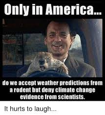 Memes America - only in america do we accept weather predictions from a rodent but