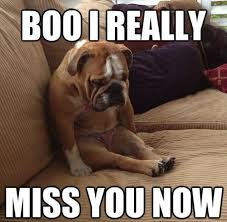 Miss You Memes - 20 cutest i miss you memes of all time sayingimages com
