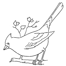 cardinal bird home decor line art coloring page cardinal on branch the graphics fairy