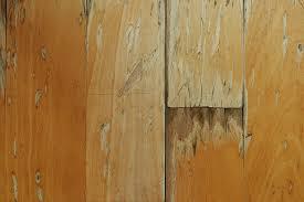repair hardwood floor damage on floor with regard to