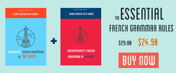 french pronoun en and y how to use it in grammar