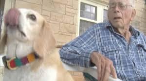 caren myers fresno lexus injured get cash 310 424 5176 lawsuit cash advance beagle