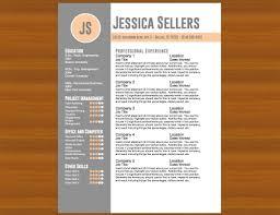 Sample Resume Portfolio by Sample Resume Portfolio Resume For Your Job Application