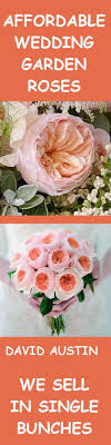 wholesale roses 100 best orange wedding flowers images on orange