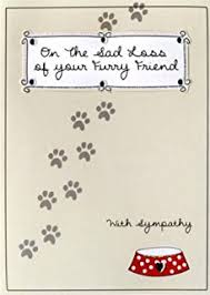 sympathy for loss of dog loss of a pet dog condolence sympathy card remembering the