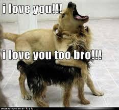 Love You Too Meme - i love you too bro