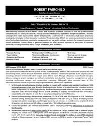 project manager resume example cover letter international business management senior project manager resume samples salesforce business analyst resume cover letter example business analyst classic business