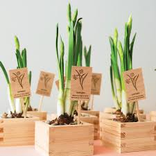 eco friendly wedding favors 6 vegan wedding favors your guests will martha stewart weddings