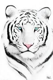 tiger face tattoo on pinterest white tiger tattoo tiger head