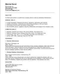 Entry Level Sas Programmer Resume Db Programmer Resume Sql Ssis Ssrs Developer Resume Sample