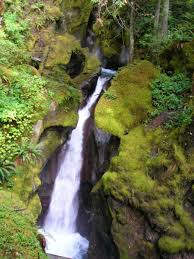 Fall Creek Falls Map Newhalem Area Trails North Cascades National Park U S National