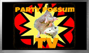 Kingmont Mobile Home Park Houston Tx Possum