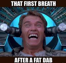 Arnold Schwarzenegger Memes - first breath after fat dab arnold total recall weed memes