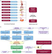 frontiers bioinformatics for precision medicine in oncology
