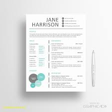 pages templates resume unique resume template apple pages best templates pages templates