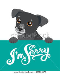 apology stock images royalty free images u0026 vectors shutterstock