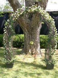 wedding arch grapevine wedding backdrop beautiful grapevine arch with cascading ferns