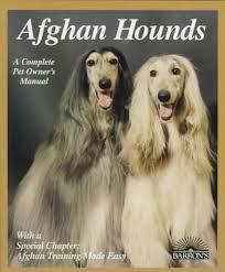 afghan hound 9 months afghan hounds barron u0027s complete pet owner u0027s manuals d caroline
