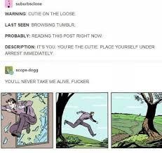 Funniest Memes Ever Tumblr - tumblr funny pinterest random memes and stuffing
