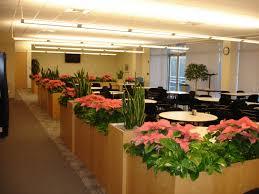 contemporary planter boxes contemporary white oval granite