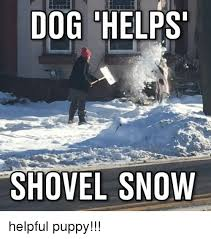 Shoveling Snow Meme - 25 best memes about shovel knight shovel knight memes