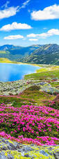 best 25 landscape pictures ideas only on pinterest nature