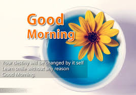 morning wishes for loved ones morning sms