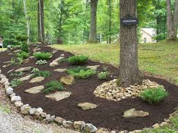 Backyard Hillside Landscaping Ideas Gorgeous Landscaping Ideas For Backyard Slope Backyard Landscaping For