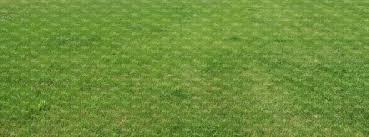 gr2821 ground textures vishopper