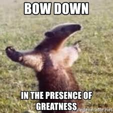 Bow Down Meme - bow down in the presence of greatness fuck you i m an anteater