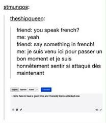 Meme Meaning French - no kidding sometimes they go a bit too far 16 times the french