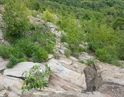 Appalachian Trail Map Pennsylvania by 1 293 Miles On The Appalachian Trail Pennsylvania Rocks U2013 The 2 200