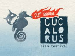 international journalism festival crowdfunding for nonprofits cucalorus film festival and connect conference indiegogo