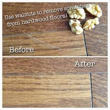 How To Fix Squeaky Hardwood Floors Baby Powder by 16 Squeaky Floors Baby Powder Gif Background Technology