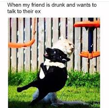 Drunk Friend Memes - drunk friend calls ex funny pictures quotes memes funny