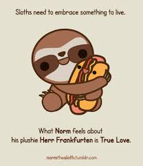 norm the sloth